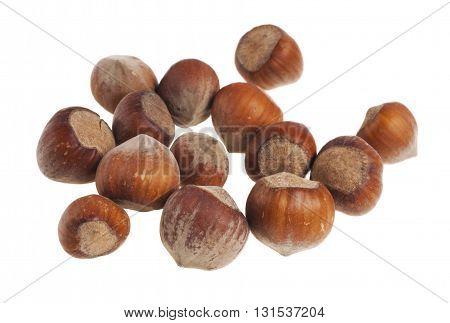 Hazelnut or filbert nut isolated on white background