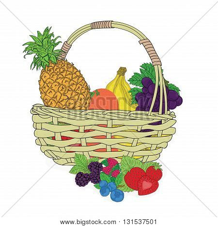 Composition with assorted fruits in a wicker basket on white. vector illustration