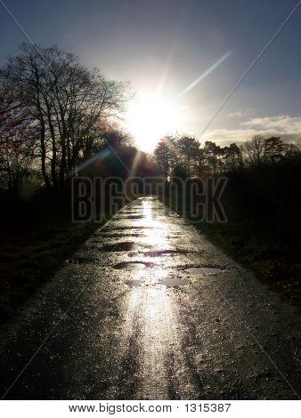 Sun On The Track