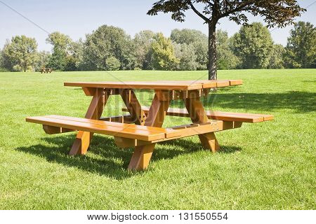 Picnic table on a green meadow with wooden table on foregoround