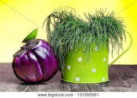 Saltwort and asian aubergine on wood table.