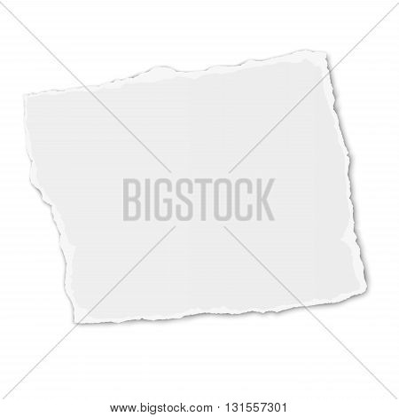 White paper tear placed on white background