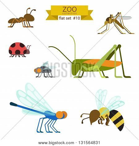 Flat design vector insects icon set