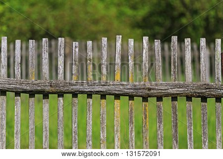 wooden fence in the orchard. green grass