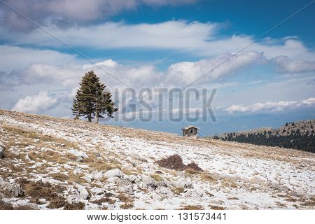 Landscape wit a small cabin and one tree in the mountains in winter.Greece