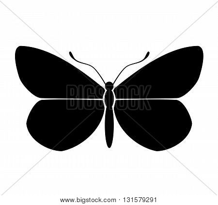 Butterfly black, big silhouette - vector illustration.