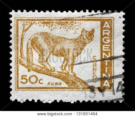 ZAGREB, CROATIA - SEPTEMBER 18: a stamp printed in the Argentina shows Puma, Cougar, Puma Concolor, circa 1960, on September 18, 2014, Zagreb, Croatia