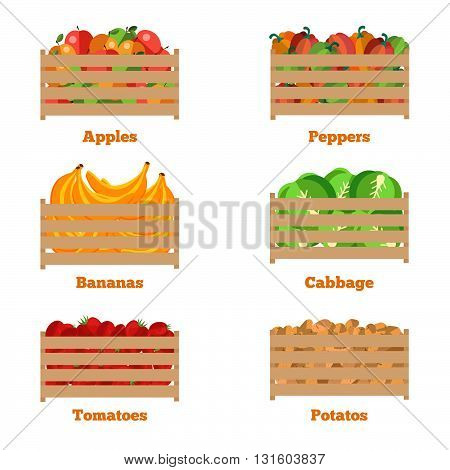 Wooden box with autumn fruits and vegetables. Vector illustration of the harvest. The isolated object of fresh natural foods. Cart with product buy in supermarket. Diet and organic food template.