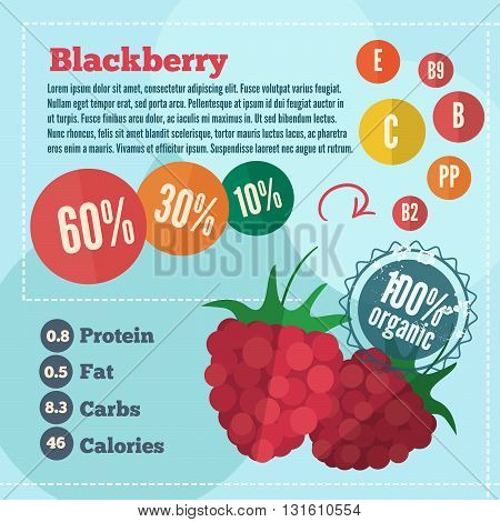 Raspberry and vitamins infographics in a flat style. Vector illustration EPS 10