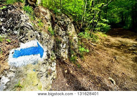 Hiking blue arrow paint marking on a rock on the trail into the woods