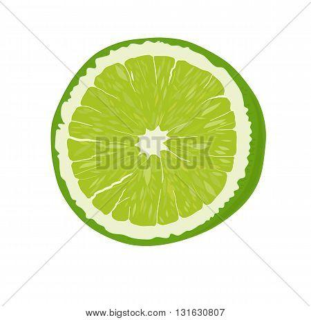 Fresh green lime fruit - vector illustration.