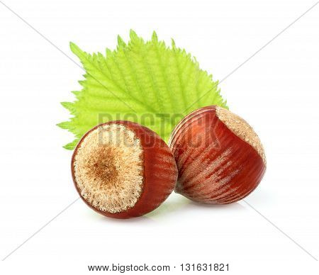 Two hazelnuts with leaves isolated on white background.