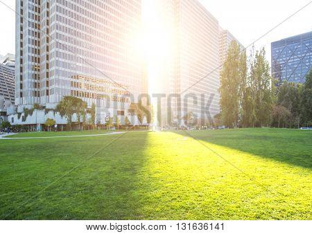green grassland near modern office buildings with sunbeam