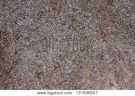 small bright pebbles and gravel as background or texture