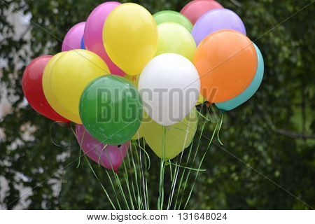 multicolored balloons gathered in one bundle  group  against the backdrop of greenery