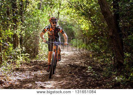 Bibbona, Tuscany, Italy - May 24, 2016: Lifestyle Mountain Bike In The Paths Of Tuscany