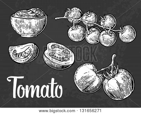 Set of hand drawn tomatoes isolated on dark background. . Tomato half and slice engraved illustration.