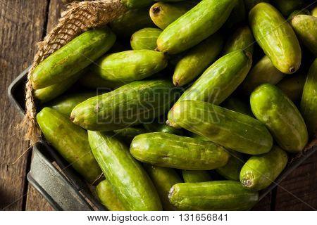 Raw Green Organic Tindora