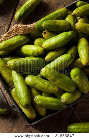 Raw Green Organic Tindora