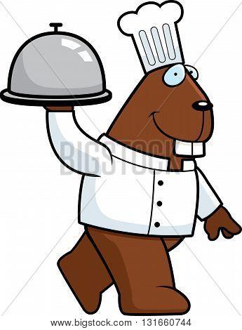 Beaver Chef