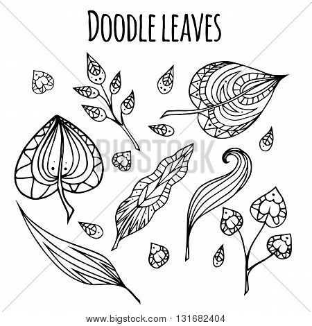Set of black and white doodle leaves with zentangle pattern. Vector element for your design.