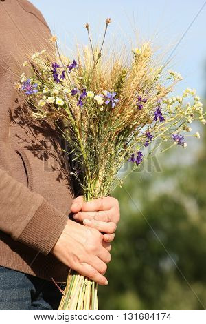 bouquet of ears of rye and wild flowers in female hands