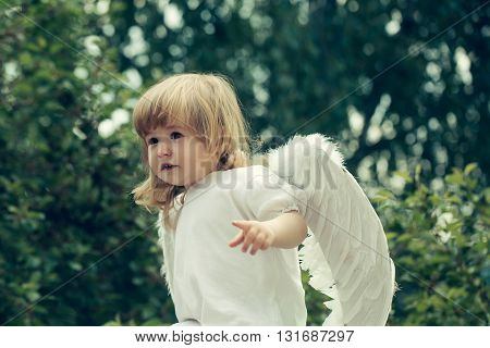 Little Boy Dressed As Angel