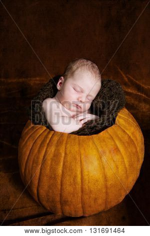 Newborn baby asleep in a hollowed out pumpkin.