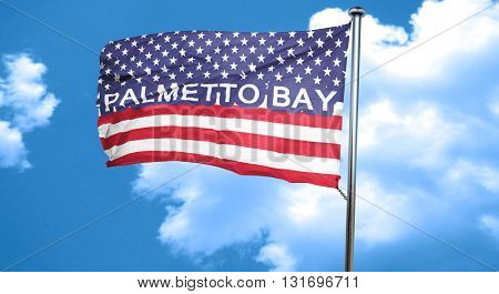 palmetto bay, 3D rendering, city flag with stars and stripes