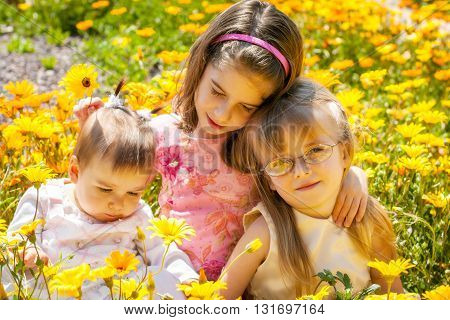 Three young girls sit close together in a Springtime field of yellow and orange African Daisies.
