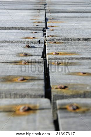 Rusty nails hammered on the boards rot