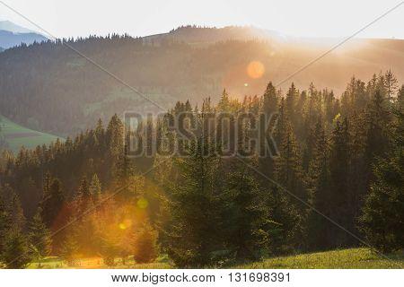 Ray Of Sunlight At Sunset Shining Through The Fog