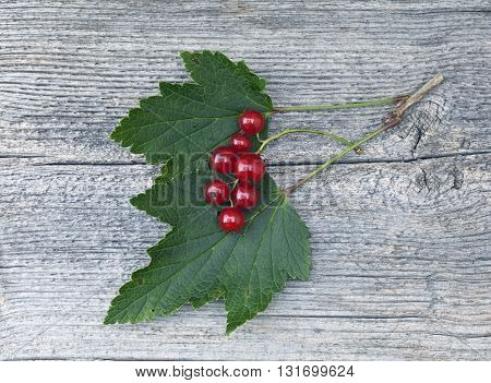 Red Currant, green leaves in closeup on an elderly wooden board, plank. Texture, pattern in the board.