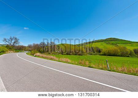 Winding Asphalt Road between Spring Fields in Tuscany