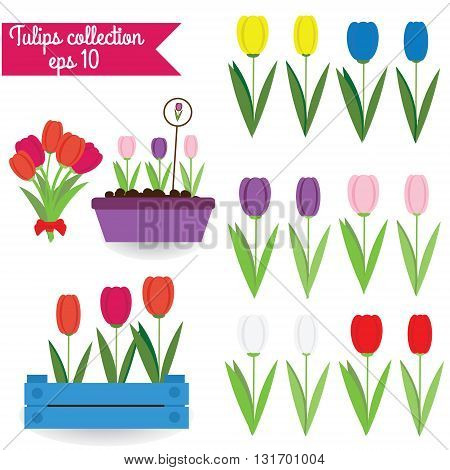 Tulips clipart collection. Set of colorful isolated flat tulips. Vector illustration design elements labels