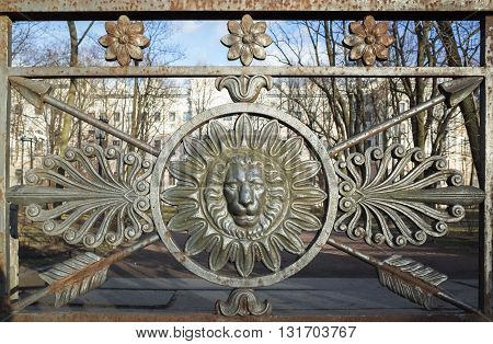 Frontal View Of Lion Head In Round Frame. Decoration