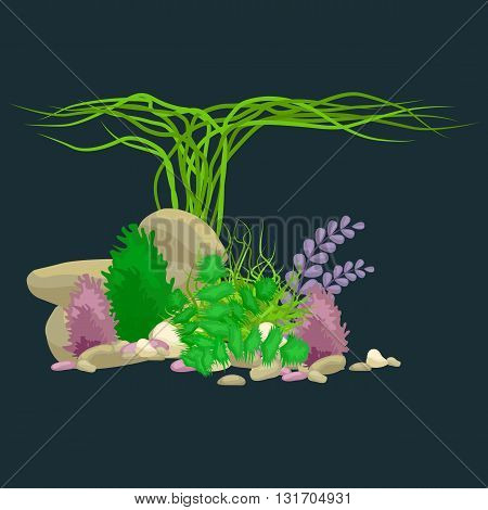 Set of isolated colorful corals and algae on a dark background. Vector underwater flora and fauna.