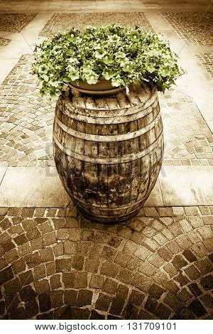 Wooden barrel with flowerpot above - toned image