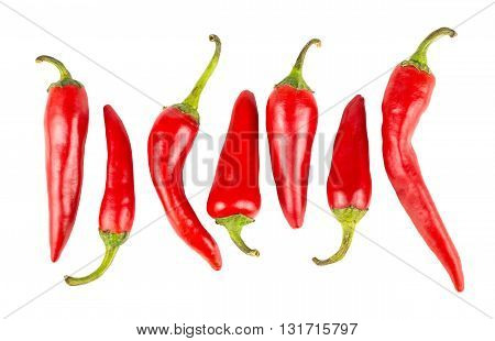 Top view of row with hot red ripe peppers isolated on white background