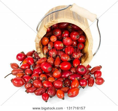 Frustrate wooden bucket and fresh rose hips isolated on a white background.