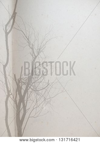 paper background,old notebook paper and branch of tree with filter