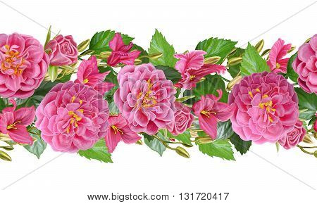 Floral background. Horizontal floral border. Pattern seamless. composition of pink roses and crimson cyclamen. Isolated on white background. Floral background.