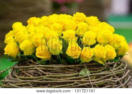 Flowers in vine