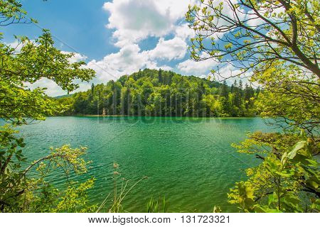 Beautiful landscape, clear green water in the Plitvice Lakes National Park in Croatia, view through the tree branches