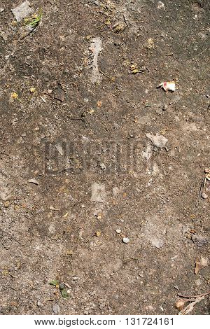 dry dirt surface with small stones as background texture