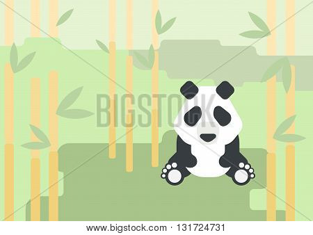 Panda bear flat design cartoon vector wild animal forest