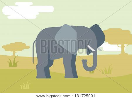 Elephant savanna flat design cartoon vector wild animals