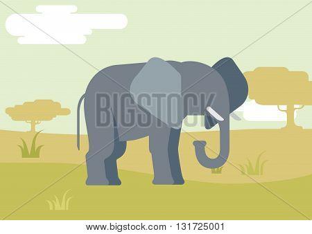 Elephant savanna flat design cartoon vector wild animals