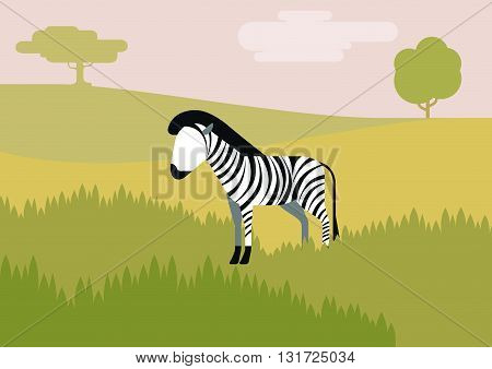 Zebra savanna flat design cartoon vector wild animals