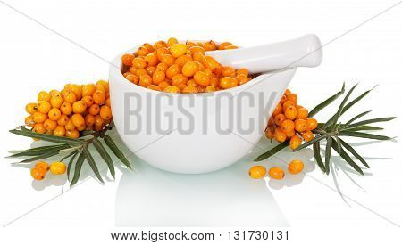 Fresh sea buckthorn berries in a mortar and pestle close up isolated on white background.